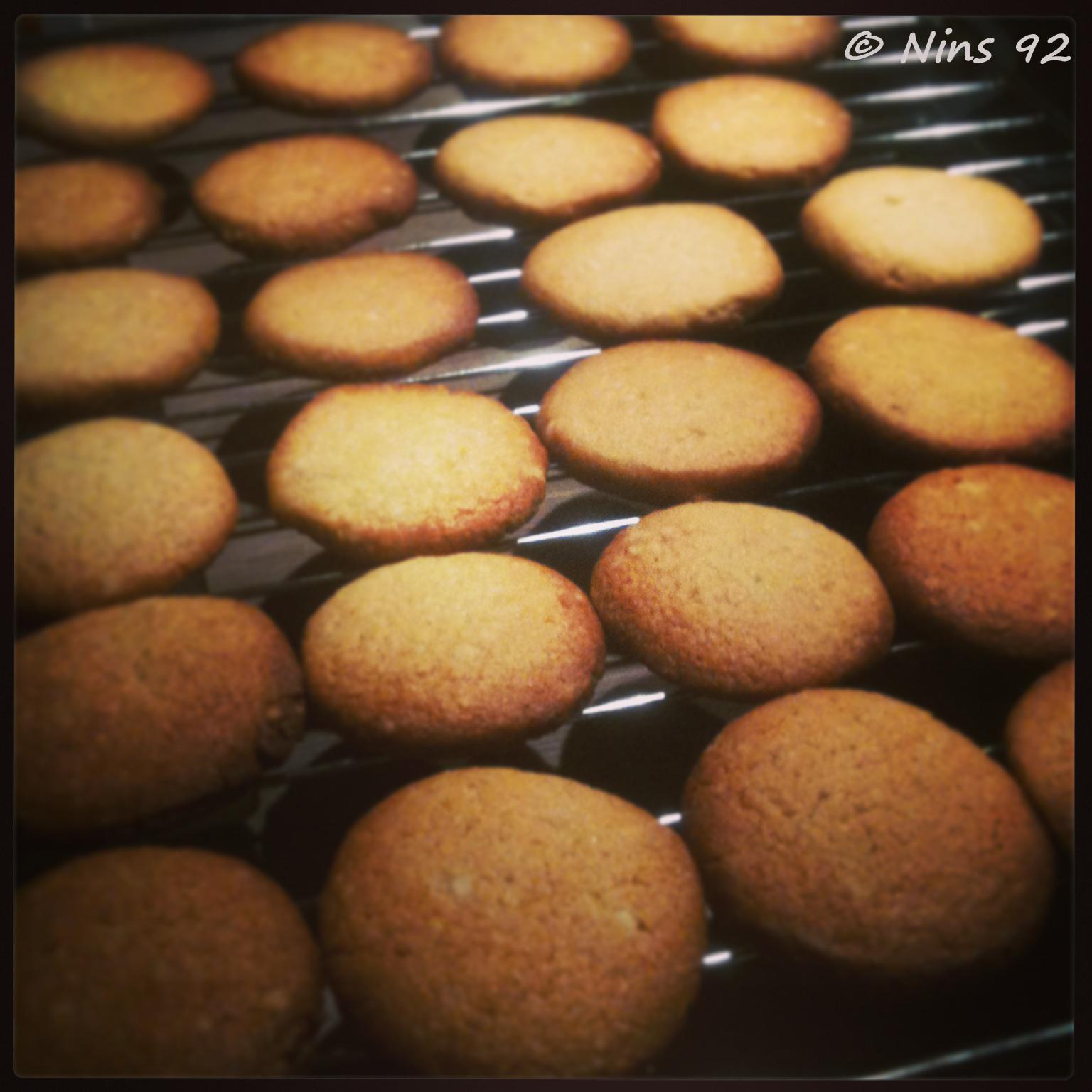 biscuitlemond03